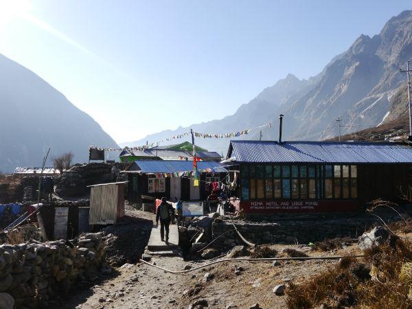 Trekking in the Langtang region: Nima Hotel at Mundu, Langtang