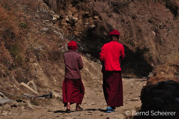 15 reasons to trek in Nepal - Buddhist monks taking a walk
