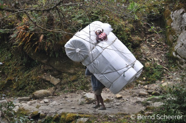 15 reasons to trek in Nepal - Porter carrying a very large load